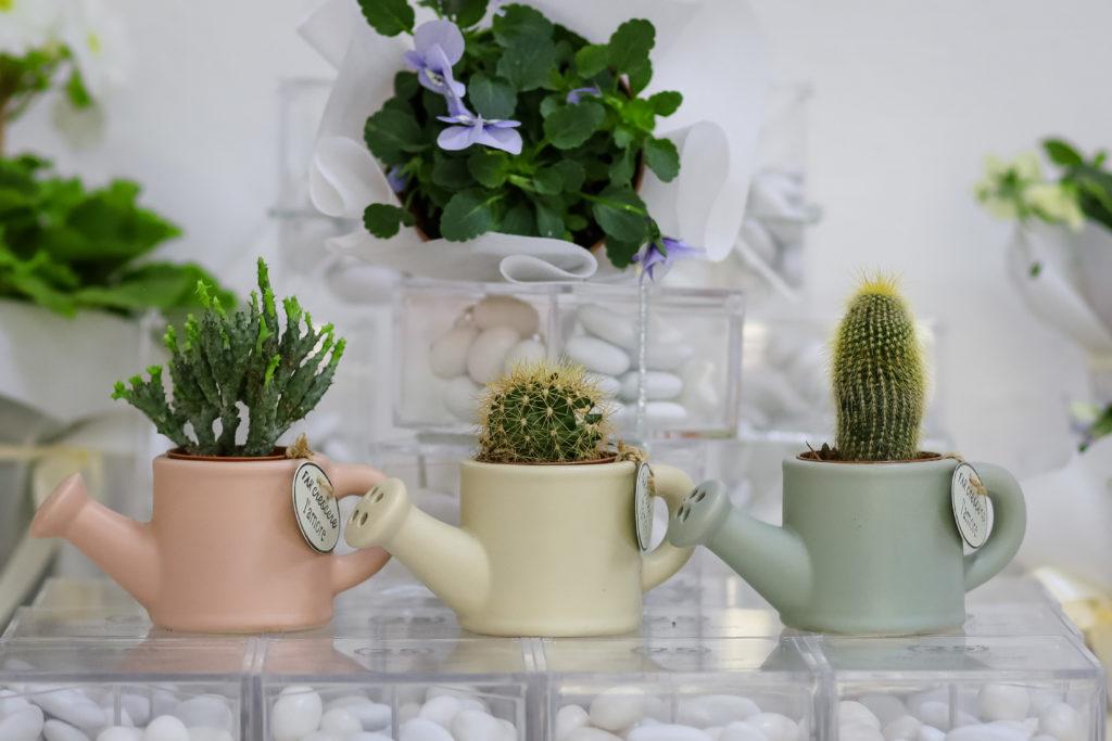 vasetto annaffiatore,vaso porcellana,bomboniere Grosseto