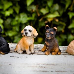 bomboniera cagnolino assortito